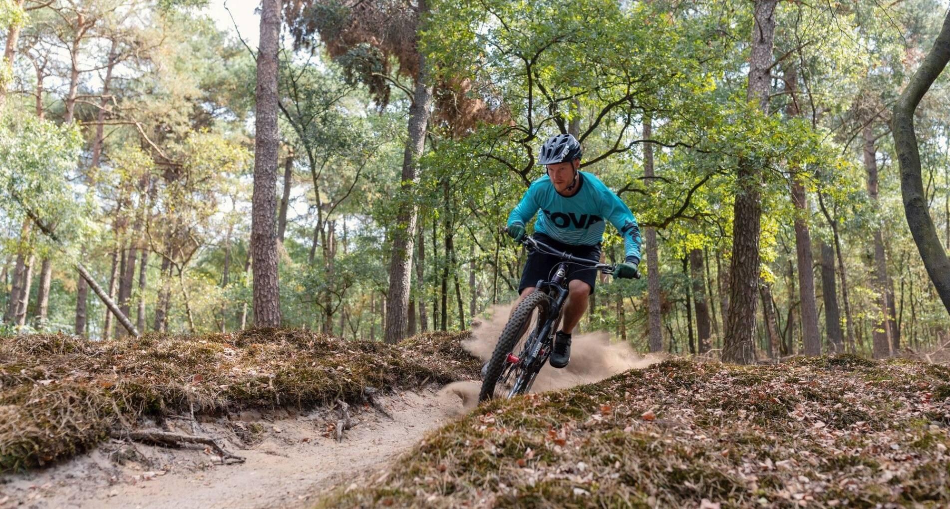 Mountainbike & Hike - Actief in Drenthe: bossen, heide en zandverstuivingen - Nederland - 1