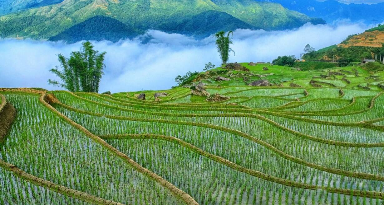 Vietnam: Sapa, Halong Bay en Saigon - VietnamSapa