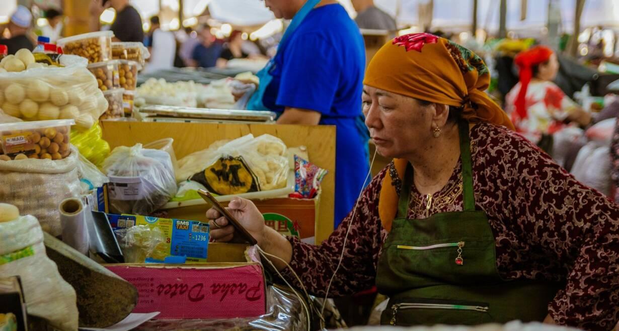 Avontuurlijk Kirgizië: Himalaya, yurts en nomaden - KirgiziëTerugvlucht naar Nederland