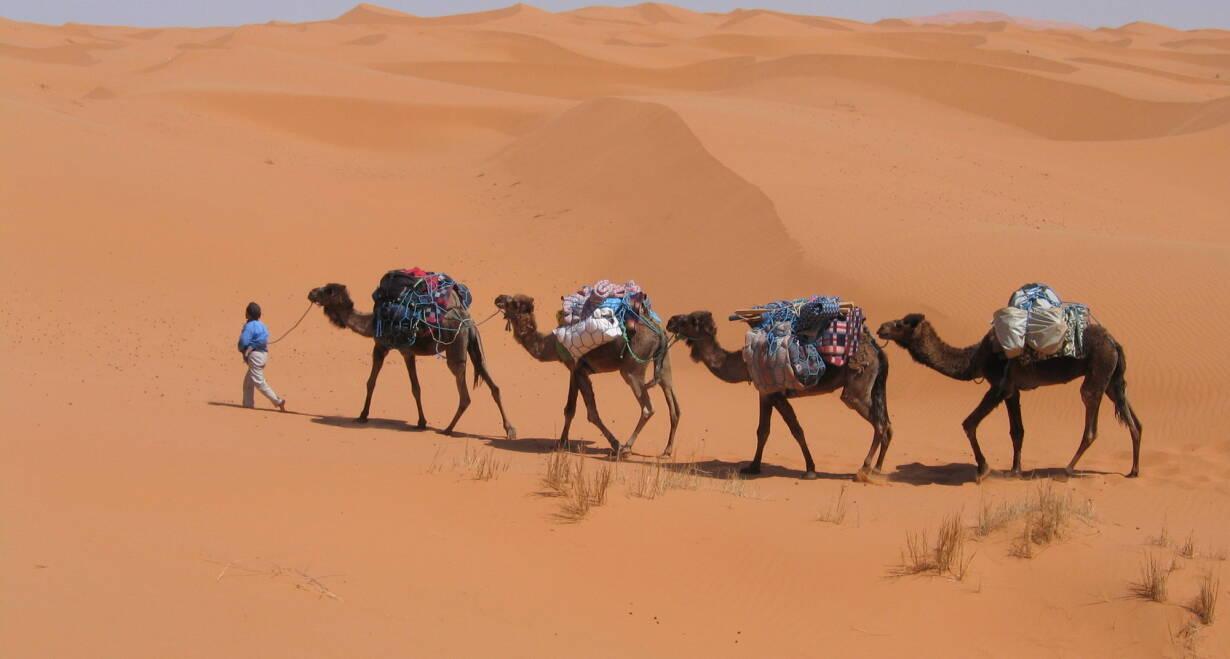 Fly & Drive Marokko: Koningssteden, kasbah's en Atlasgebergte - MarokkoDoor de woestijn naar Merzouga