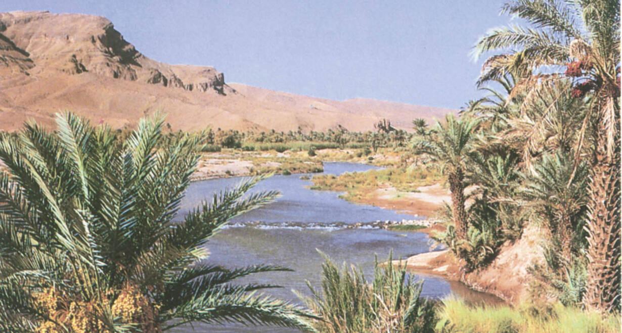 Fly & Drive Marokko: Koningssteden, kasbah's en Atlasgebergte - MarokkoWestwaarts naar Tinghir